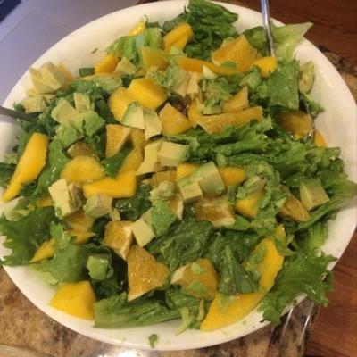 Mango-, Orangen-, Grapefruit-, Avocado- und Pistazien-Salat