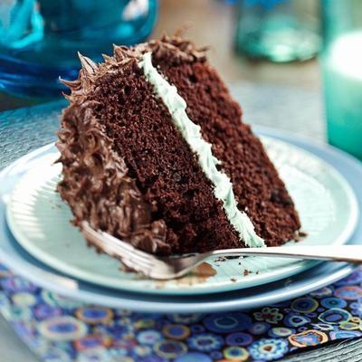 Schokoladen-Minze-Torte