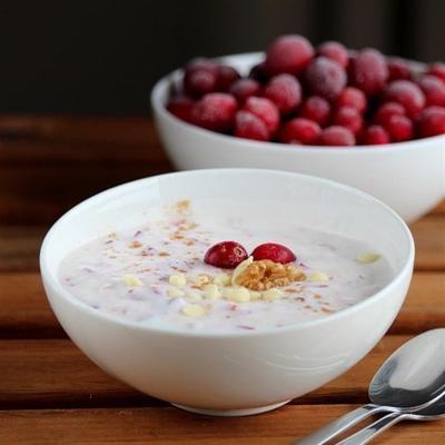 Schokoladen-Cranberry-Nuss-Joghurt-Dip