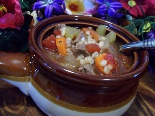 2bleu Rindfleischgerste Suppe (oder Hühnchengerste Suppe)