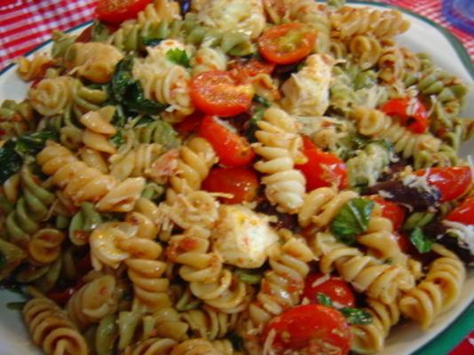 sonnengetrockneter Nudelsalat aus Tomaten und frischem Mozzarella
