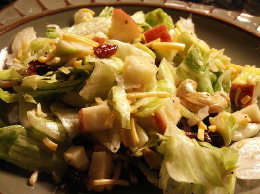 Cranberry, Birne, Apfel geworfener Salat