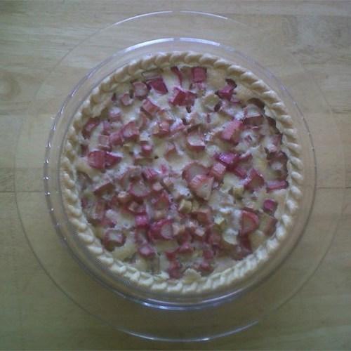 Rhabarberkuchen - einzelne Kruste